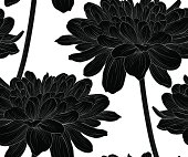 black and white seamless background with flowers dahlia