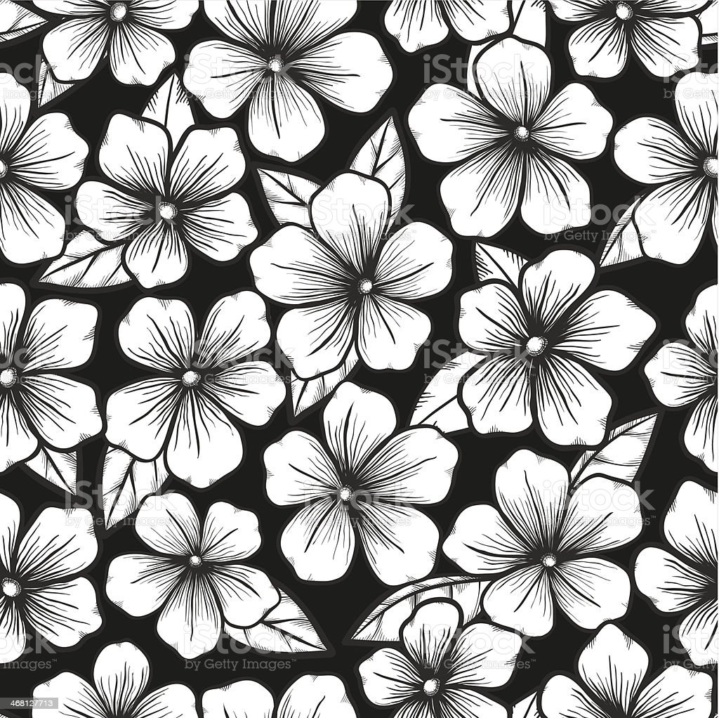 Black And White Seamless Backgroundwith Graphic Outline Of Flowers