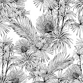 istock Black and white seamless pattern with exotic Pincushion flowers and palm leaves. 1222017925