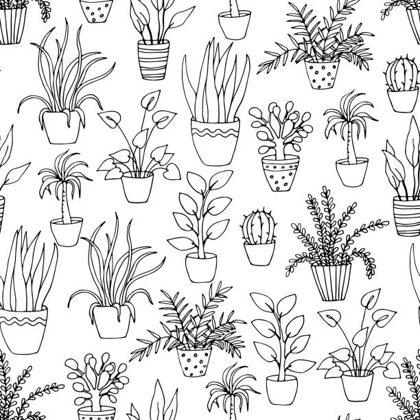 black and white seamless pattern with hand drawn indoor flowers black and white seamless pattern with hand drawn indoor flowers potted plant stock illustrations