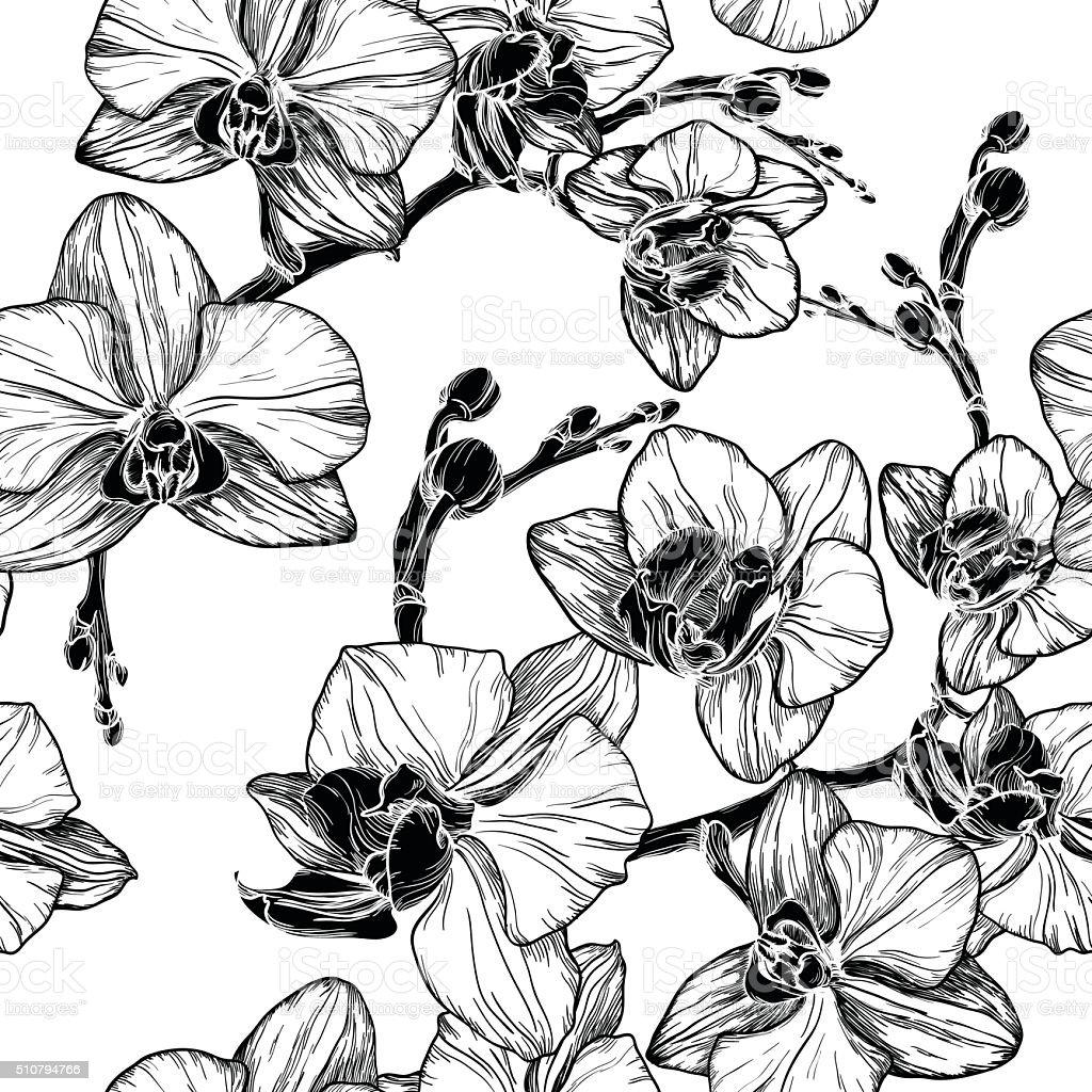 schwarz und wei nahtlose muster mit orchideen blumen stock vektor art und mehr bilder von. Black Bedroom Furniture Sets. Home Design Ideas