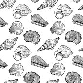 Black and white seamless pattern with seashells. Hand drawn outline vector illustration of underwater shells. Nautical background. Marine elements on white for cards, decoration, textile, print