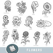 Black and white set of flowers, collection of nature items with names in English. Cartoon visual dictionary for children about plants