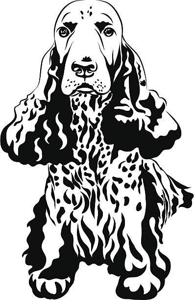 schwarz und weiß gehaltene gun hund englischer cocker spaniels sitzbereich - hundehaarbögen stock-grafiken, -clipart, -cartoons und -symbole