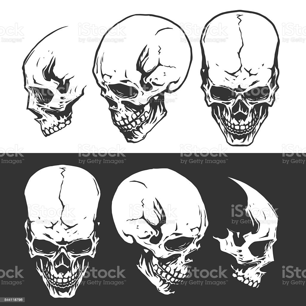 Black and white skulls vector art illustration