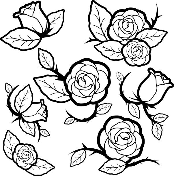 Black and white tattoo style roses and buds Vector black and white illustration set of tattoo style roses and buds. sharp stock illustrations