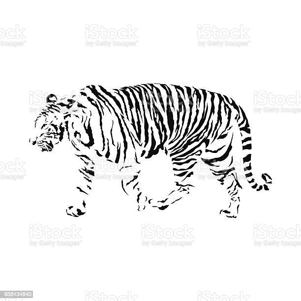 Black and white tiger isolated wild animal vector illustration vector id638434840?b=1&k=6&m=638434840&s=612x612&h=enpglzdwozqjgpecsxq1wuj yg7o4pwnqcdt ay4gcy=