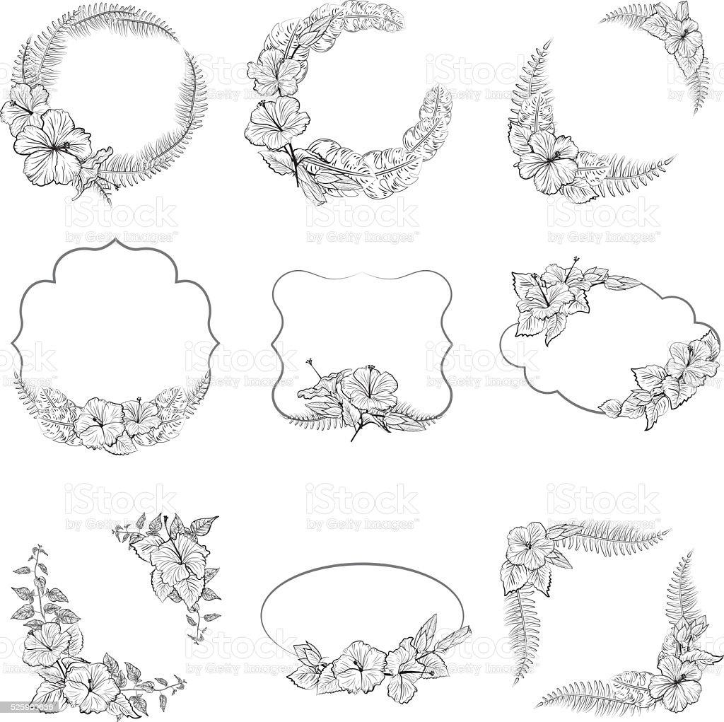 白黒ハイビスカスの花フレーム - イラストレーションのベクターアート