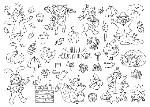 Black and white vector autumn animals set. Cute outline woodland collection. Fall season icons pack.  Funny forest line illustration or coloring page with hedgehog, fox, bird, deer, rabbit, bear