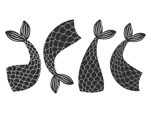 Black and white vector fishes, mermaids tails collection Black and white vector fishes, mermaids tails collection. Mermaid and fairytale fish, tail of animal illustration animal fin stock illustrations