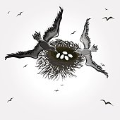 Black and white vector illustration of birds over their nest