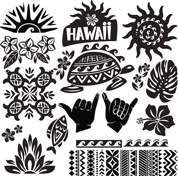 Black and white vector illustration of Hawaii Hawaii Set in black and white frangipani stock illustrations