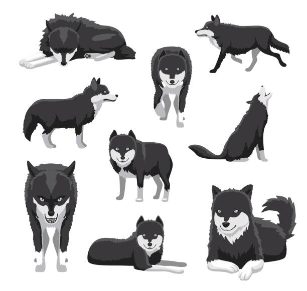 Royalty Free Wolves Running Clip Art, Vector Images ...