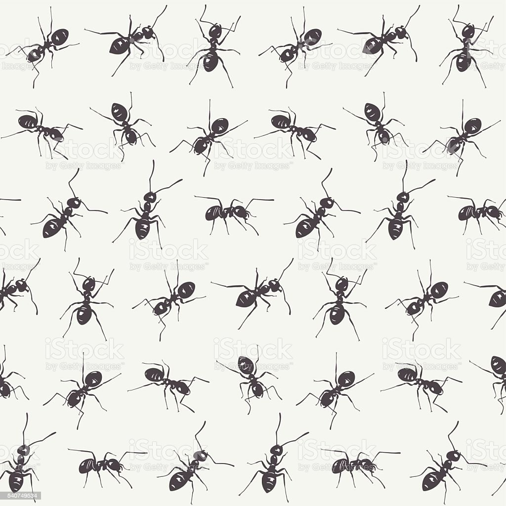 Black ants on a white background. Vector seamless pattern vector art illustration