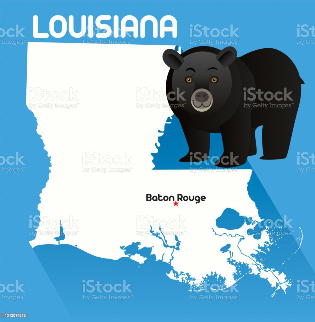 Black Bear, Louisiana vector art illustration