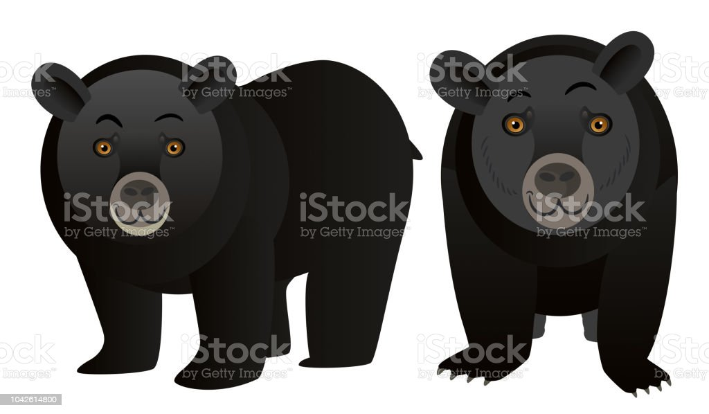 Black Bear vector art illustration