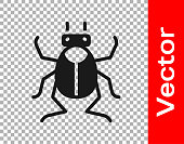 Black Beetle bug icon isolated on transparent background. Vector.