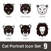 black big cat breed face cartoon flat icon series