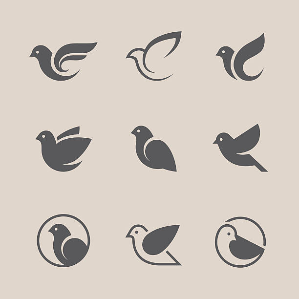 Black bird icons set Bird icons set. Dove and pigeon abstract symbol. Can be used for freedom or peace, spa, beauty, health or family care center design concept pigeon stock illustrations