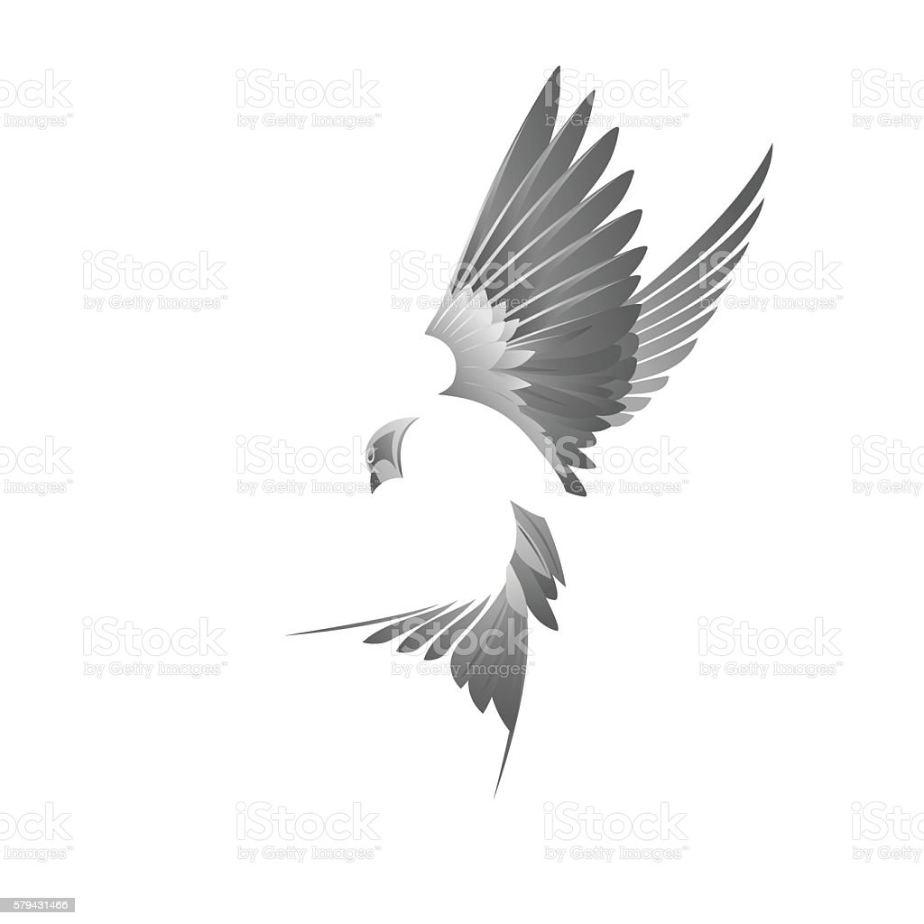 Black bird illustration vector art illustration