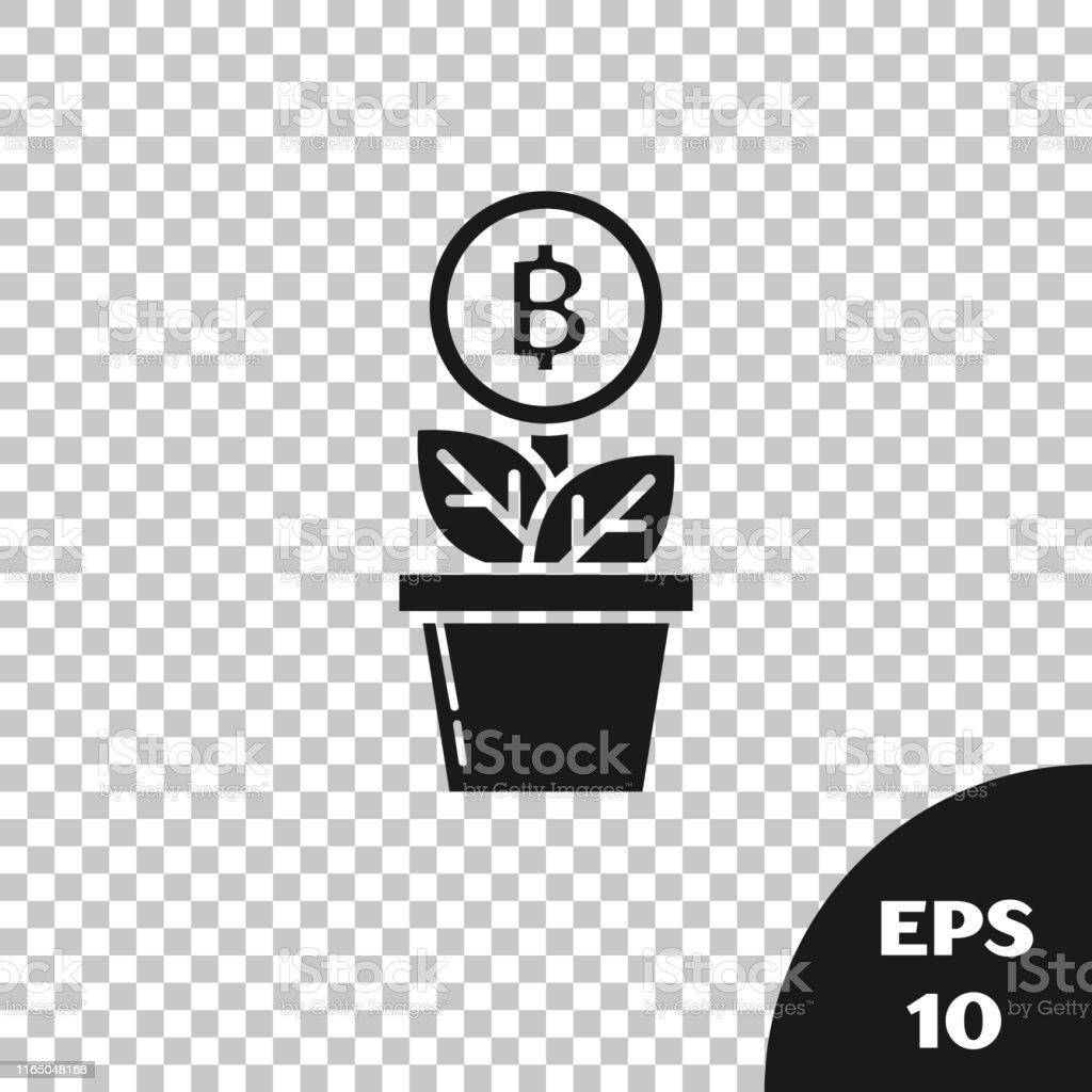 PotCoin - Bitcoin (POT/BTC) Convertitore del tasso di cambio delle valute | CoinYEP