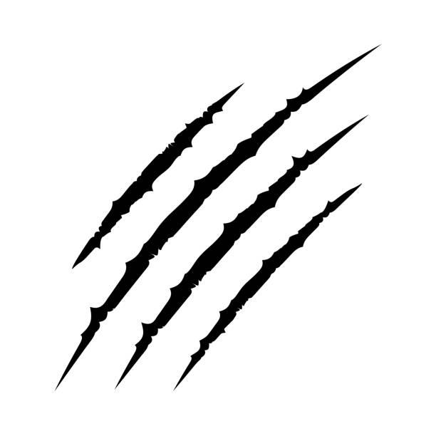 czarne krwawe pazury zwierząt scratch scrape utwór. kot tygrys drapie kształt łapy. cztery paznokcie ślad. zabawny element projektu. płaska konstrukcja. białe tło. izolowane. - ciąć stock illustrations