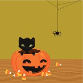Black cat sitting in the pumpkin. Easy to edit, elements are on different layers.