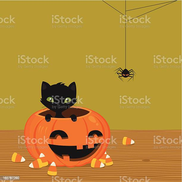 Black cat and pumpkin vector id165787260?b=1&k=6&m=165787260&s=612x612&h=dojyifqhc6wvl99m zklgpbad5lxhlwfvvvhtlgcimy=