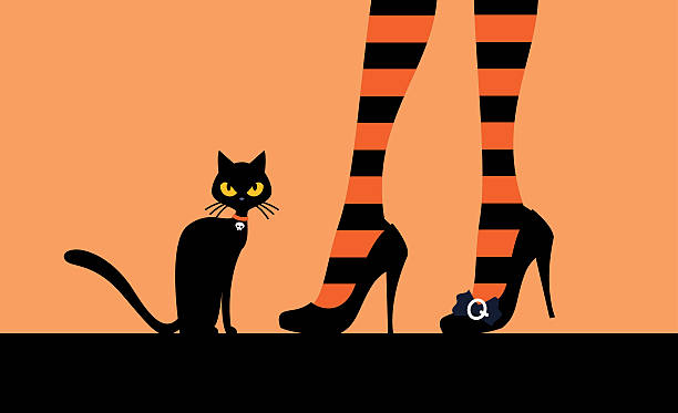 Black cat and witch's legs vector art illustration