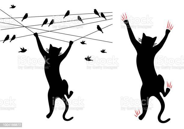 Black cat climbing birds on wire vector vector id1004186872?b=1&k=6&m=1004186872&s=612x612&h=b900hkx9llwolkrbyxr5sosy9fynmy5g0mdh3eggpyw=