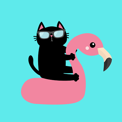 Black cat floating on white flamingo pool float water circle icon. Swimming pool water. Sunglasses. Lifebuoy. Cute cartoon relaxing character. Hello Summer. Flat design. Blue background. Isolated.