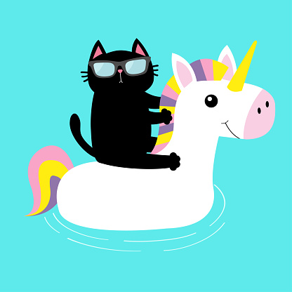 Black cat floating on white unicorn pool float water circle icon. Swimming pool water. Sunglasses. Lifebuoy. Cute cartoon relaxing character. Hello Summer. Flat design. Blue background. Isolated.