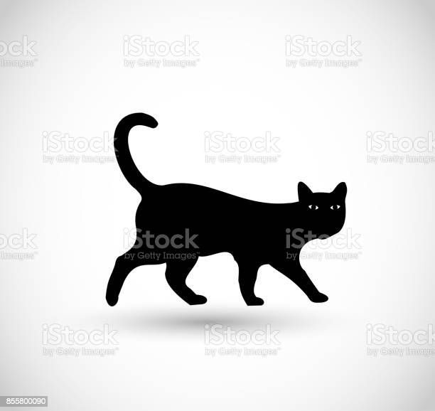 Black cat icon vector vector id855800090?b=1&k=6&m=855800090&s=612x612&h=vz93rxwtuiaynecqjci41jzm3syt9r6qgfqjxd5veok=