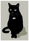 A black cat on a neutral background.