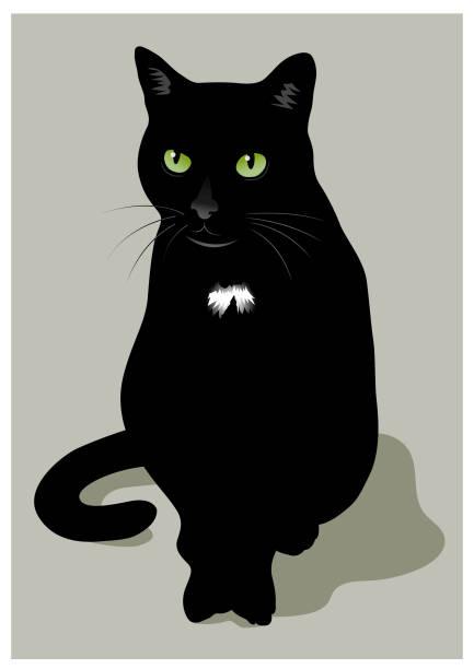 Black cat illustration vector art illustration