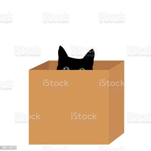 Black cat in a box vector id868143572?b=1&k=6&m=868143572&s=612x612&h=mqh5d7yf7uvw6hd6t6ssgu8srqqtumnrsioo3xojexg=