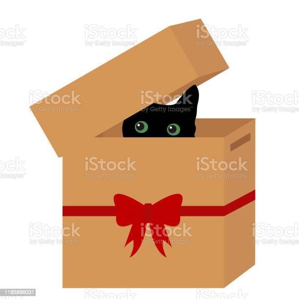 Black cat in a box with red ribbon vector id1183896031?b=1&k=6&m=1183896031&s=612x612&h=wjf9ptmpan7kddyb24svlfgyczilzsetxvx1mnuncba=