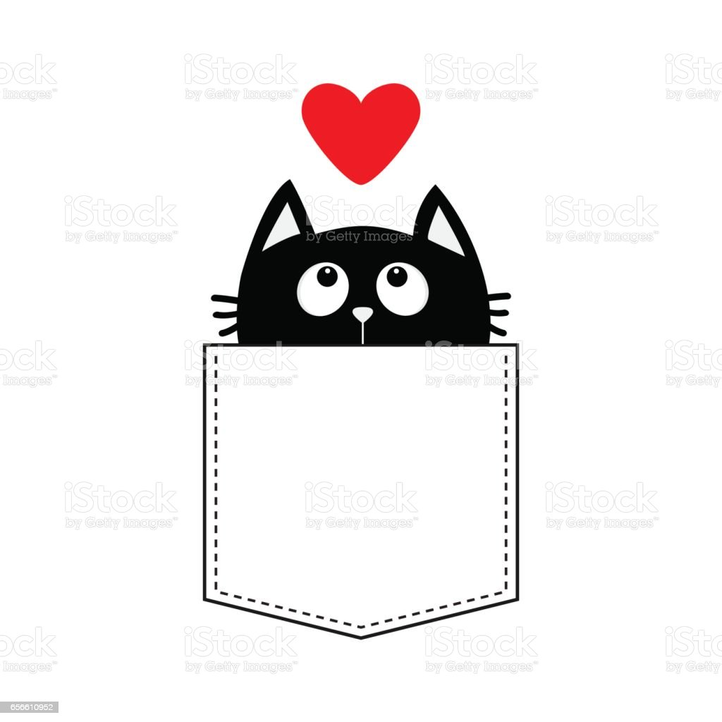 Black cat in the pocket looking up to red heart. vector art illustration
