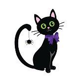 Black cat isolated on white background.Halloween