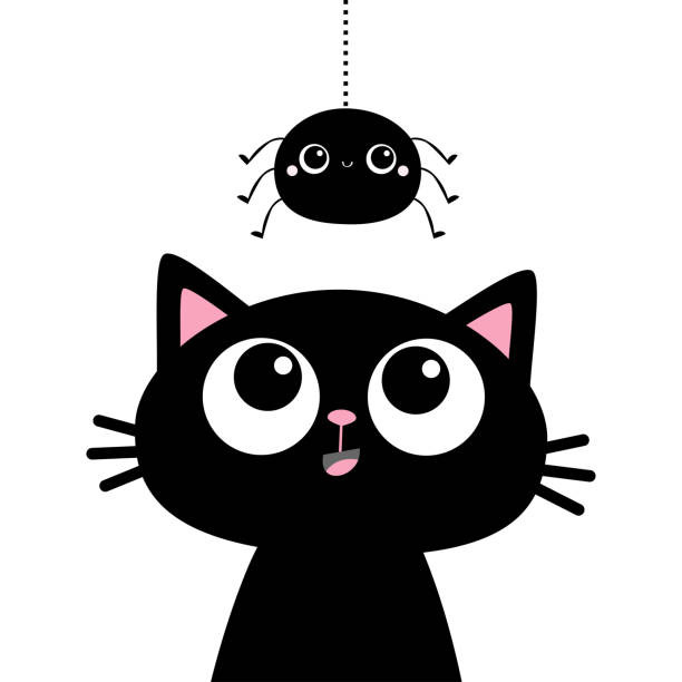 Black cat kitten face head silhouette looking up to hanging spider. Cute cartoon funny character. Kawaii baby animal. Pet sticker. Flat design. Scandinavian style. White background. Black cat kitten face head silhouette looking up to hanging spider. Cute cartoon funny character. Kawaii baby animal. Pet sticker. Flat design. Scandinavian style. White background Vector illustration black cat stock illustrations