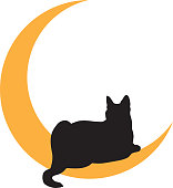 Vector illustration of a black cat lying on a gold moon.