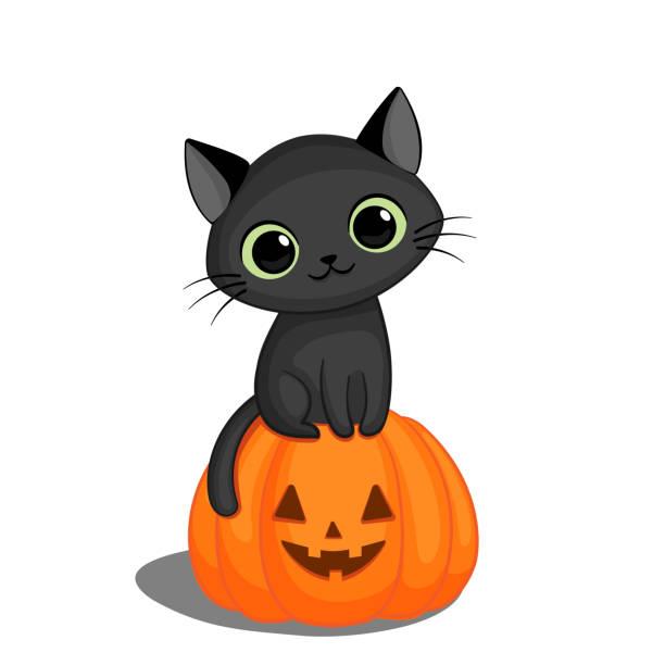 17 595 Halloween Cat Illustrations Clip Art Istock