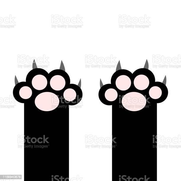 Black cat paw print pads leg foot with scratching claw nail set cute vector id1156940876?b=1&k=6&m=1156940876&s=612x612&h=2ag74vsrjfsykol2s8jbdqpruqgszjajgnwqyslwawg=