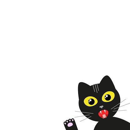 black cat peeking in a frame card