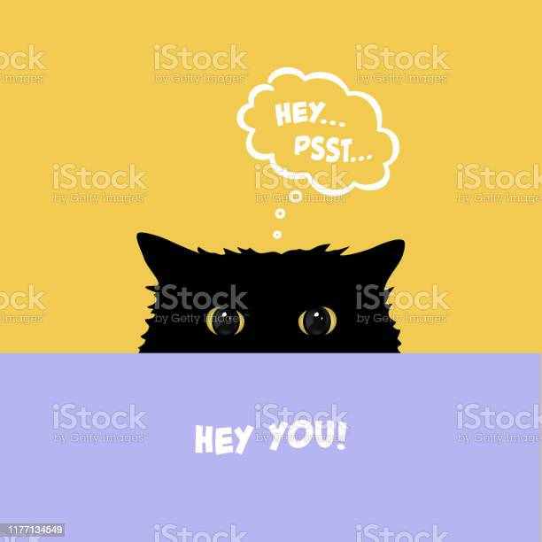 Black cat playing hide and seek cute cat with yellow eyes peeking vector id1177134549?b=1&k=6&m=1177134549&s=612x612&h=4y4ynld1sd jycxpcwi6wm27zk0qnnmwvco8h53a2ma=