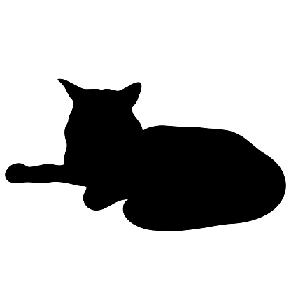 Black cat vector icon. The pet is lying. Hand-drawn black silhouette of an animal. Isolated illustration of a beast on a white background. Maine Coon outlines. Domestic cat