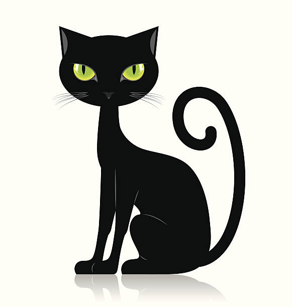 Black cat Black cat isolated on white background halloween cat stock illustrations