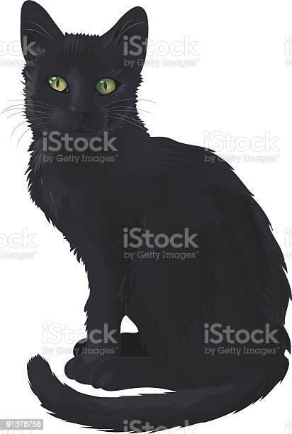 Black cat vector id91378758?b=1&k=6&m=91378758&s=612x612&h=3ep w1dl7kb8peofnw9lypkfpbogcqhizd74ct2ievc=