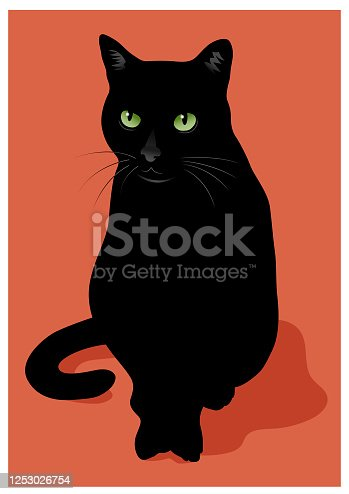 istock Black cat vector illustration 1253026754