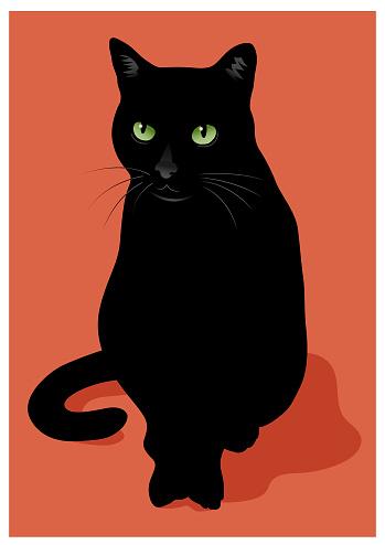 Black cat vector illustration